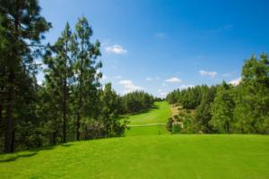 Chaparral Golf Club, Mijas, Costa del Sol, hoyo 1