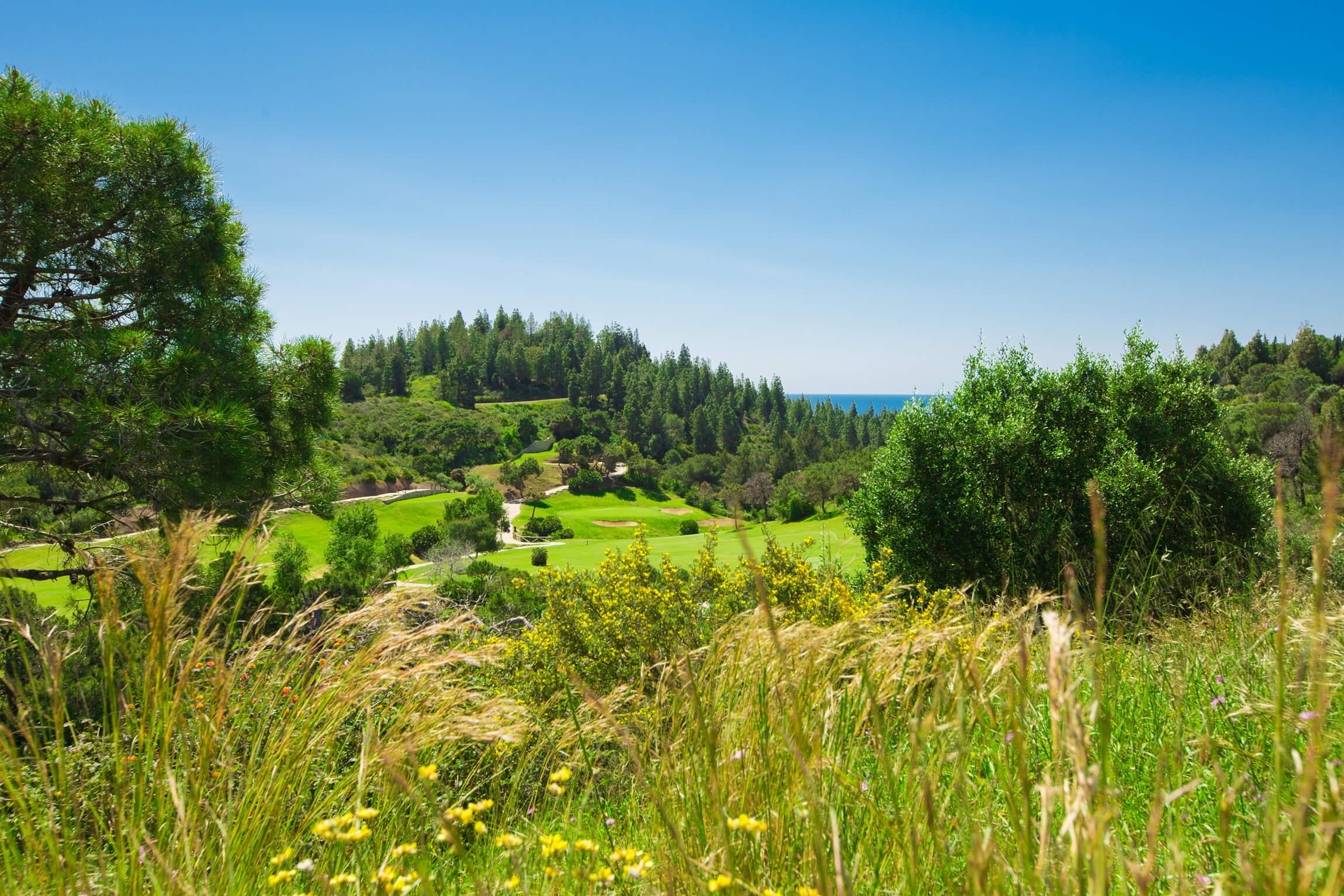 Chaparral Golf Club, Mijas, Costa del Sol, hoyo 12