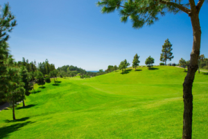 Chaparral Golf Club, Mijas, Costa del Sol, hoyo 13
