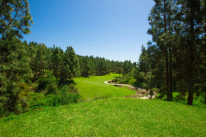 Chaparral Golf Club, Mijas, Costa del Sol, hoyo 8