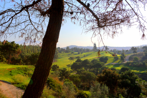 el-chaparral-golf-views2