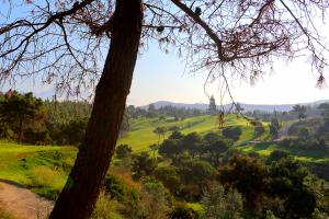 el-chaparral-golf-views2