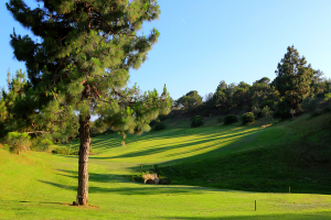 hole-3-el-chaparral-golf-club
