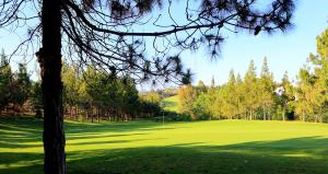 hole-4-el-chaparral-golf-club-1