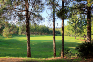 hole-4-el-chaparral-golf-club