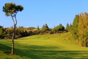 hole-7-el-chaparral-golf-club