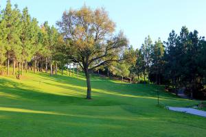 hole-8-el-chaparral-golf-club-2