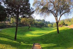 hoyo11-el-chaparral-golf-club-1