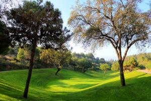 hoyo11-el-chaparral-golf-club-2
