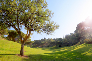 hoyo11-el-chaparral-golf-club-4