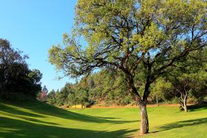 hoyo11-el-chaparral-golf-club-5