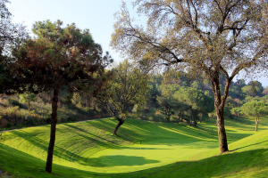 hoyo11-el-chaparral-golf-club-7
