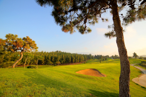 hoyo14-el-chaparral-golf-club-3