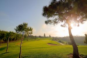 hoyo14-el-chaparral-golf-club-5