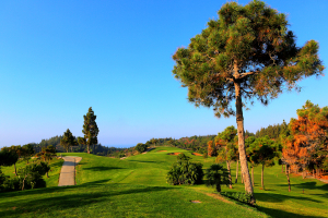 hoyo14-el-chaparral-golf-club-6