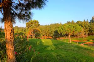 hoyo14-el-chaparral-golf-club7