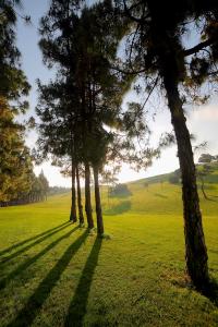 hoyo15-el-chaparral-golf-club-3
