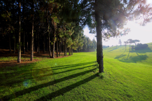 hoyo15-el-chaparral-golf-club-5