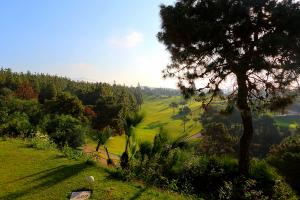 hoyo15-el-chaparral-golf-club-6