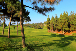 hoyo15-el-chaparral-golf-club-7