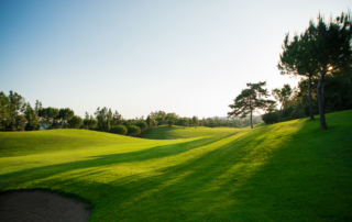 New golf season, Hole 9 Chaparral Golf Club, MIjas, Costa del Sol